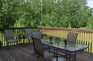 Photo 32: 472016 RGE RD 241: Rural Wetaskiwin County House for sale : MLS®# E4242573