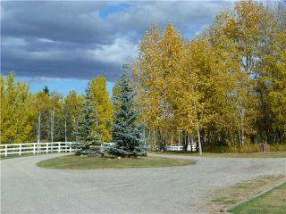 Photo 8: 43141 TWP RD 283 in COCHRANE: Rural Rocky View MD Residential Detached Single Family for sale : MLS®# C3506968