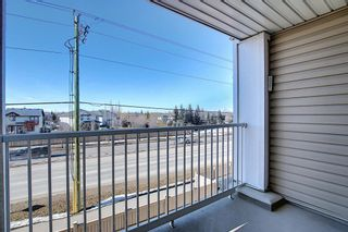 Photo 34: 326 428 Chaparral Ravine View SE in Calgary: Chaparral Apartment for sale : MLS®# A1078916