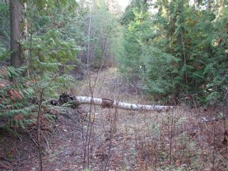 Photo 10: Lot 1 Trans Canada Hwy: Sorrento Land Only for sale (Shuswap)  : MLS®# 10171991