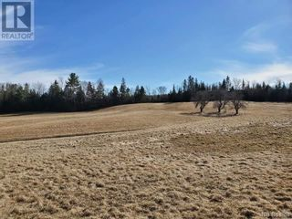 Photo 3: - Route 755 in Tower Hill: Vacant Land for sale : MLS®# NB055567