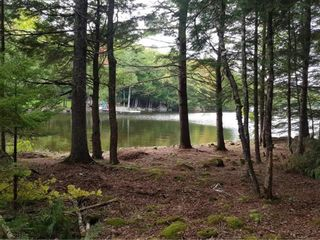 Photo 8: Lot 49 Eagle Rock Drive in Franey Corner: 405-Lunenburg County Residential for sale (South Shore)  : MLS®# 202125889