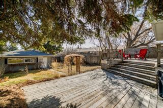 Photo 32: 436 38 Street SW in Calgary: Spruce Cliff Detached for sale : MLS®# A1097954