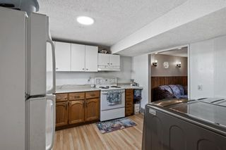 Photo 29: 4772 Rundlehorn Drive NE in Calgary: Rundle Detached for sale : MLS®# A1144252