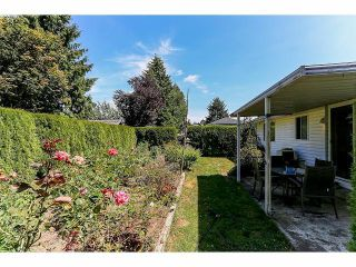 """Photo 18: 15665 93RD Avenue in Surrey: Fleetwood Tynehead House for sale in """"Belair Estates"""" : MLS®# F1417825"""