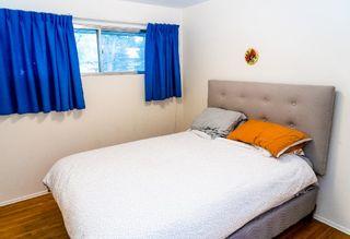 Photo 10: 8755 64 Avenue in Edmonton: Zone 17 House for sale : MLS®# E4263854