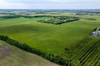 Photo 7: TWP 490 RR252: Rural Leduc County Rural Land/Vacant Lot for sale : MLS®# E4248157