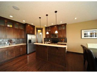 Photo 8: 164 EVEROAK Close SW in CALGARY: Evergreen Residential Detached Single Family for sale (Calgary)  : MLS®# C3446163