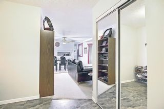 Photo 6: 110 11 Dover Point SE in Calgary: Dover Apartment for sale : MLS®# A1096781