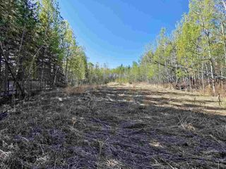 """Photo 4: 12925 CHERRY Road: Charlie Lake Land for sale in """"CHARLIE LAKE"""" (Fort St. John (Zone 60))  : MLS®# R2519694"""