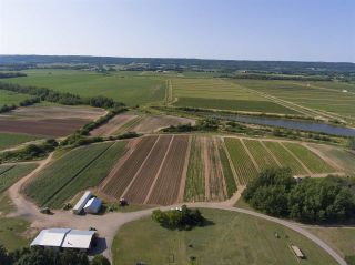 Photo 15: 2969 Highway 1 in Aylesford East: 404-Kings County Farm for sale (Annapolis Valley)  : MLS®# 201919454