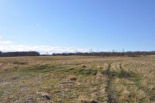 Photo 19: 10 57126 Range Road 12: Rural Barrhead County Rural Land/Vacant Lot for sale : MLS®# E4241768