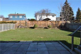 Photo 6: 123 Wilson Drive in Milton: Dorset Park House (Sidesplit 4) for lease : MLS®# W4002144
