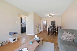 Photo 12: 241 Simon Street: Shelburne House (Backsplit 3) for sale : MLS®# X5213313
