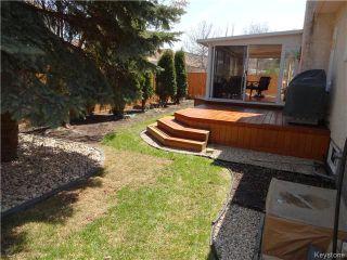 Photo 5: 95 Redview Drive in Winnipeg: St Vital Residential for sale (South East Winnipeg)  : MLS®# 1611382