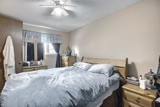 Photo 15: 367 Maitland Crescent NE in Calgary: Marlborough Park Detached for sale : MLS®# A1093291