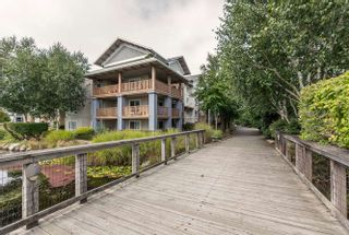 """Photo 18: 305 5600 ANDREWS Road in Richmond: Steveston South Condo for sale in """"THE LAGOONS"""" : MLS®# R2209894"""