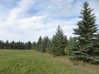 Photo 10: 0 Centreline Road: RM Springfield Vacant Land for sale (R04)  : MLS®# 202103923