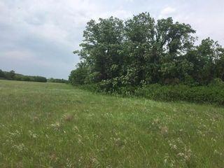 Photo 24: 0 SW-12-03-04-E RAPIDS Road in Dominion City: R17 Farm for sale : MLS®# 202117943