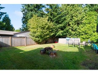 "Photo 16: 1591 132B Street in Surrey: Crescent Bch Ocean Pk. House for sale in ""OCEAN PARK"" (South Surrey White Rock)  : MLS®# F1430966"