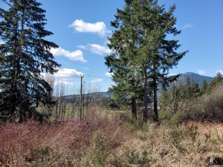 Main Photo: 6593 Trans Canada Hwy in : Du East Duncan Land for sale (Duncan)  : MLS®# 869608