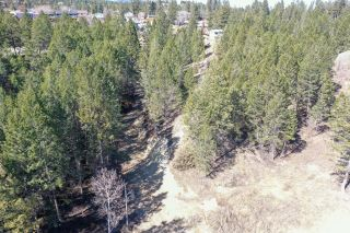 Photo 9: Lot #5 TAYNTON DRIVE in Invermere: Vacant Land for sale : MLS®# 2457612