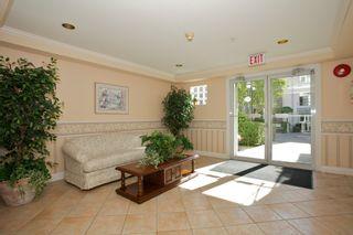 "Photo 37: 401 15340 19A Avenue in Surrey: King George Corridor Condo for sale in ""Stratford Gardens"" (South Surrey White Rock)  : MLS®# F1448318"