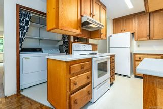 Photo 19: 3341 Egremont Rd in Cumberland: CV Cumberland House for sale (Comox Valley)  : MLS®# 879000
