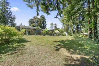 Photo 23: 21744 124 Avenue in Maple Ridge: West Central House for sale : MLS®# R2552153