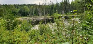 Photo 11: LOT A 37 Highway: Kitwanga Land for sale (Smithers And Area (Zone 54))  : MLS®# R2506362