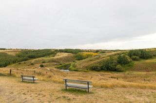 Photo 37: 201 MACEWAN PARK View NW in Calgary: MacEwan Glen Detached for sale : MLS®# C4232497