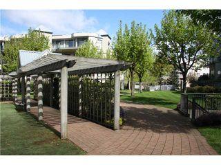 Photo 7: 206 2978 BURLINGTON Drive in Coquitlam: North Coquitlam Condo for sale : MLS®# V1004547