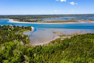 Photo 7: 39 Tanner Avenue in Lawrencetown: 31-Lawrencetown, Lake Echo, Porters Lake Residential for sale (Halifax-Dartmouth)  : MLS®# 202115223