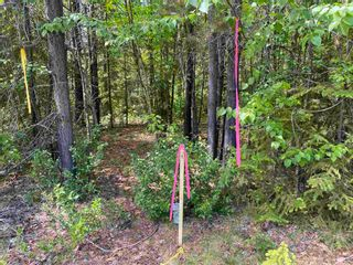 """Photo 6: LOT 7 S SOMERSET Drive: Cluculz Lake Land for sale in """"SOMERSET ESTATES"""" (PG Rural West (Zone 77))  : MLS®# R2596563"""