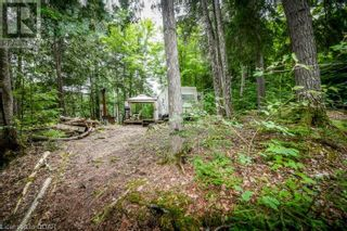 Photo 13: 0 MARKS POINT Road in Bancroft: Vacant Land for sale : MLS®# 40141117