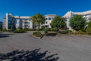 """Photo 2: 117 2626 COUNTESS Street in Abbotsford: Abbotsford West Condo for sale in """"The Wedgewood"""" : MLS®# R2218687"""