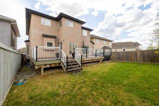 Photo 48: 11016 177 Avenue in Edmonton: Zone 27 House for sale : MLS®# E4244099