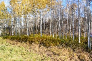 """Photo 8: Lot 5 OLD BABINE LAKE Road in Smithers: Smithers - Rural Land for sale in """"Driftwood"""" (Smithers And Area (Zone 54))  : MLS®# R2625264"""
