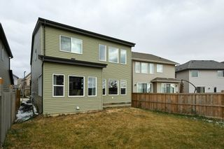 Photo 38: 3954 CLAXTON Loop in Edmonton: Zone 55 House for sale : MLS®# E4226999