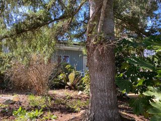 """Photo 9: 867 KENT Street: White Rock House for sale in """"East Beach White Rock"""" (South Surrey White Rock)  : MLS®# R2564324"""