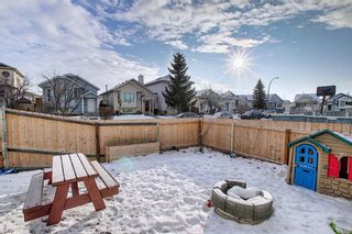 Photo 29: 163 Erin Meadow Green SE in Calgary: Erin Woods Detached for sale : MLS®# A1077161