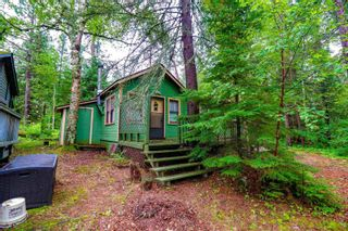 Photo 21: LK283 Summer Resort Location in Boys Township: Retail for sale : MLS®# TB212151