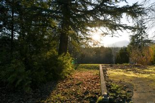 Photo 10: 4659 McQuillan Rd in : CV Courtenay East Land for sale (Comox Valley)  : MLS®# 863260