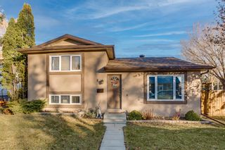 Photo 1: 8 Mckenna Road SE in Calgary: McKenzie Lake Detached for sale : MLS®# A1049064