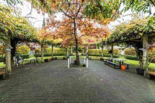 "Photo 4: 316 12633 72 Avenue in Surrey: West Newton Condo for sale in ""College Park"" : MLS®# R2547182"