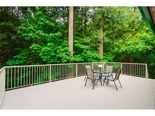 """Photo 34: 4067 199A Street in Langley: Brookswood Langley House for sale in """"BROOKSWOOD"""" : MLS®# R2461084"""