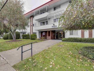 "Photo 5: 106 12096 222 Street in Maple Ridge: West Central Condo for sale in ""CANUCK PLACE"" : MLS®# R2525660"