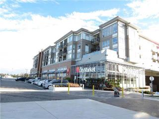 """Photo 3: 219 12339 STEVESTON Highway in Richmond: Ironwood Condo for sale in """"The Gardens"""" : MLS®# R2166952"""