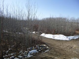Photo 30: 1 Rural Address in Bjorkdale: Commercial for sale (Bjorkdale Rm No. 426)  : MLS®# SK849476