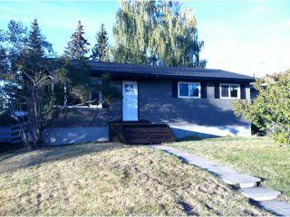 Photo 18: 26 WILSON Street: Okotoks Residential Detached Single Family for sale : MLS®# C3554999